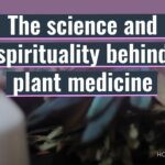 the science and spirituality behind plant medicine whole hearted media video thumbnail